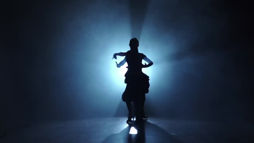 Emotional and graceful latinamerican dance performed by champions, slow motion   Shutterstock HD Video #25457282