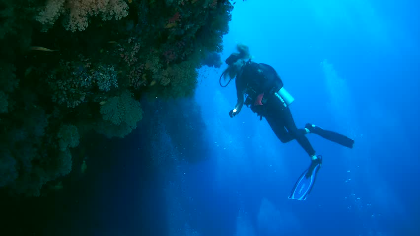 INDIAN OCEAN, MALDIVES - MARCH 2017: Young woman scuba diver looks at a beautiful coral reef with soft corals, Indian Ocean, Maldives  | Shutterstock HD Video #25695533