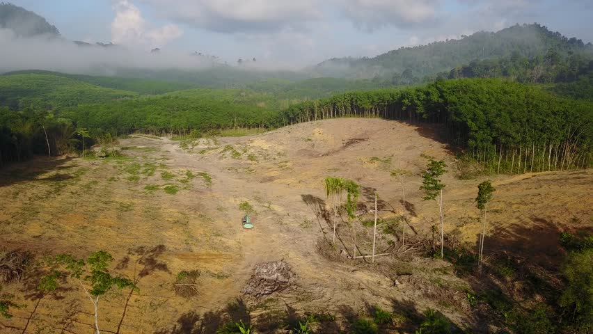 Deforestation. Aerial drone view of forest destroyed in Thailand | Shutterstock HD Video #26149292