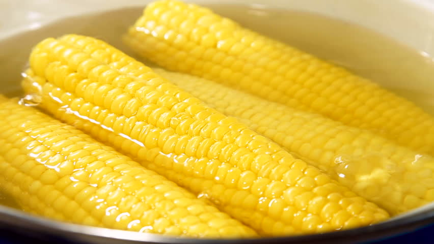 Corn boiled in pan cooking corn in boiled water sweet corn boiled corn cob hd stock footage clip ccuart Choice Image