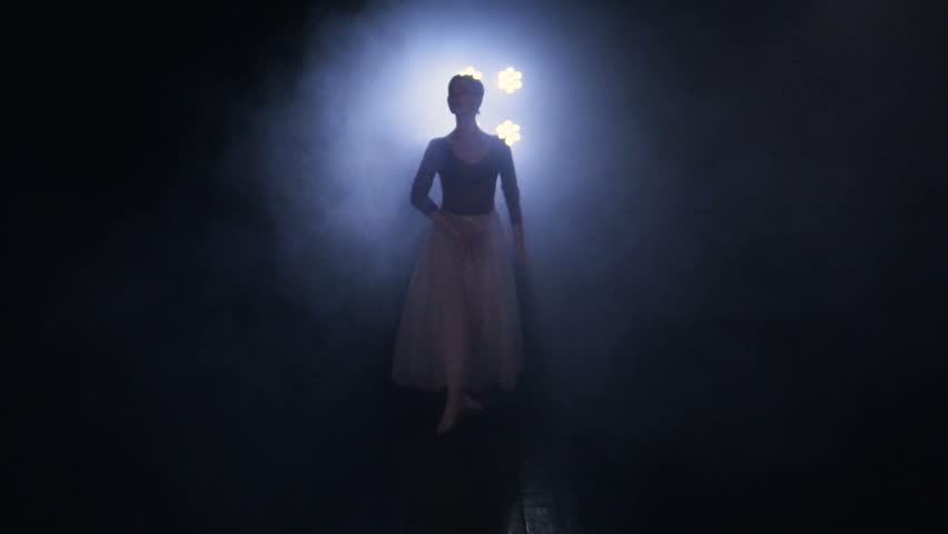 Ballet movements performed by the elegant ballet dancerl. Close-up. Portrait. HD. | Shutterstock HD Video #26510123