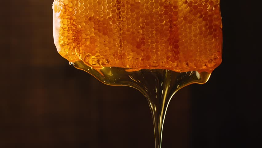Bee honeycomb wax with honey