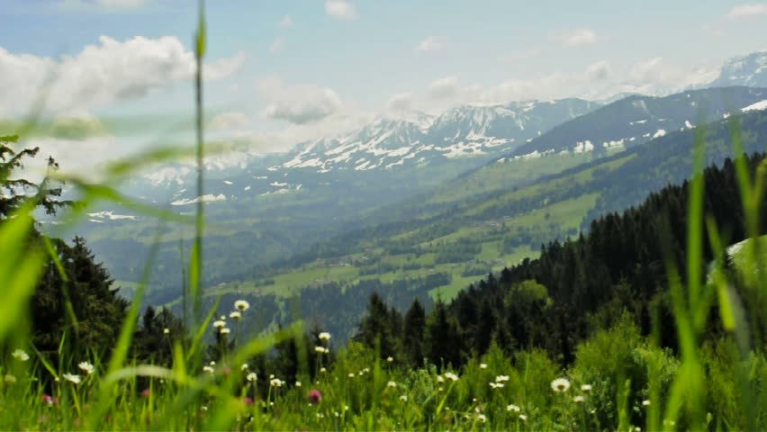 Meadow in wind with view to the alps in Austria