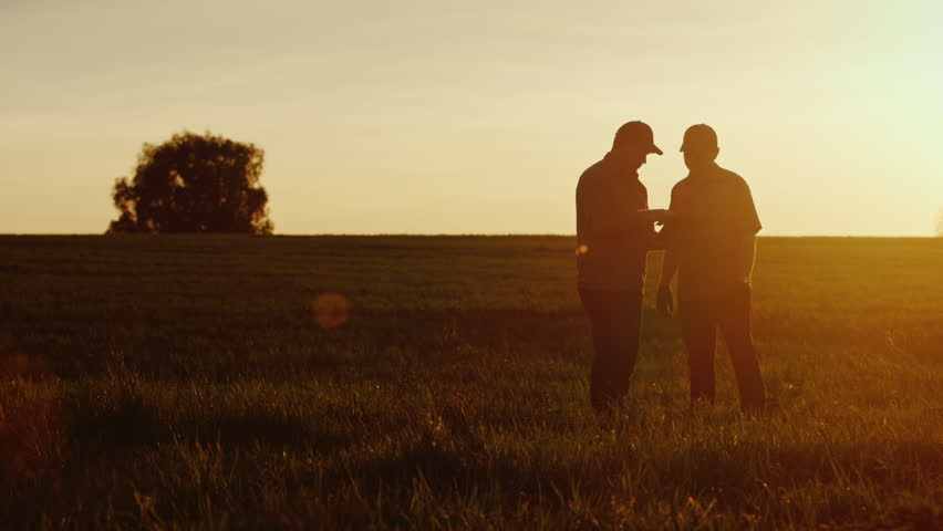 Two farmer workers communicate in the field, use a tablet. At the beautiful sunset