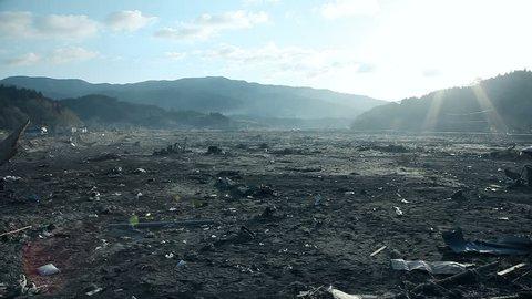 Tsunami :04/30/2011  japan