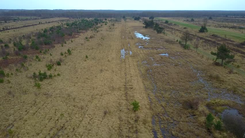 Aerial flight shot in a grassy bushy wet peat bog moor landscape in lower saxony of Germany, the main area for commercial peat-harvesting. / Aerial flight about bushy wet peat bog nature landscape 4k