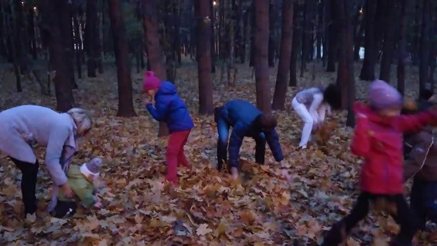 Adults and children throw bunches of dry leaf to each other in evening autumn forest, mobile phone video.