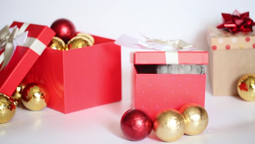 Close up of cute blue British kitten play and look around inside paper gift box on red leather chair in christmas day.   Shutterstock HD Video #27288163