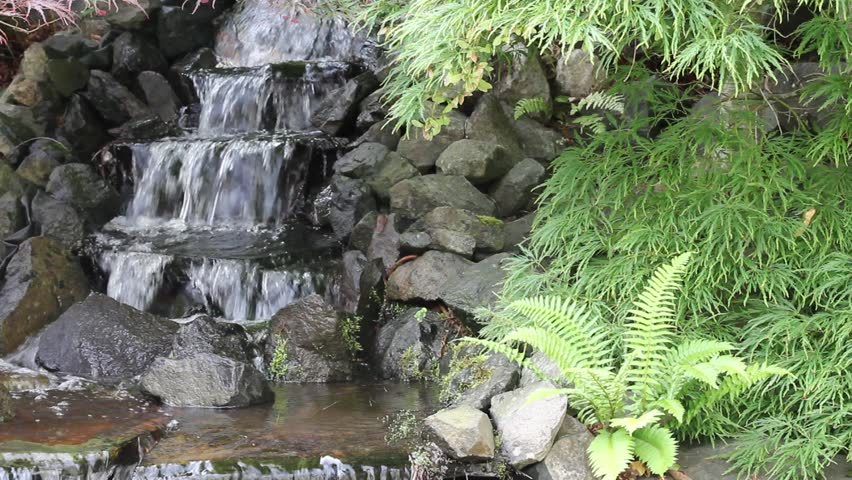 Waterfall In Backyard Zen Garden With Maple Trees And Ferns 1920x1080   HD  Stock Video Clip