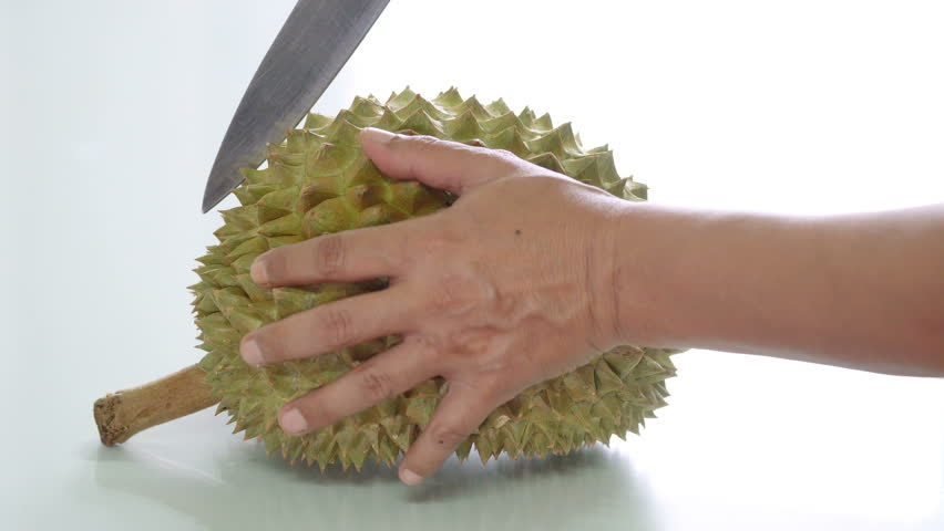durian peelings Find the perfect durian peel stock photo huge collection, amazing choice, 100+ million high quality, affordable rf and rm images no need to register, buy now.