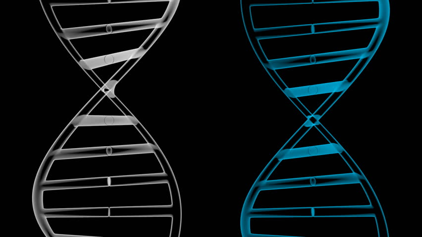 3D animation/ 3D rendering - DNA chains (deoxyribonucleic acids). Two splitting DNA chains on black background - great for topics like science, medicine, genetics, technology etc. | Shutterstock HD Video #27540943