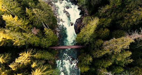 Trail Walkers Crossing River Bridge in Natural Old Growth Forest Trees Aerial High Above Looking Down