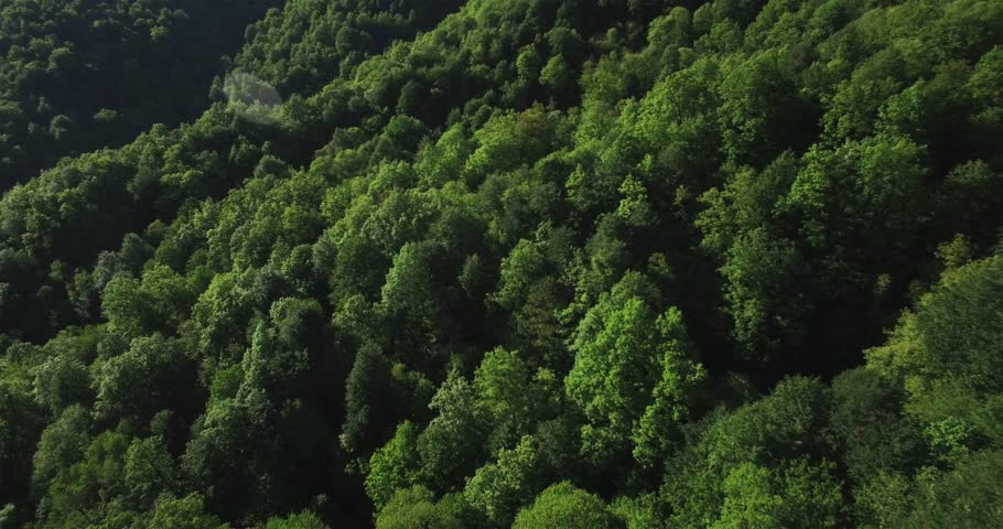 Aerial view of green russian mountains | Shutterstock HD Video #27981925