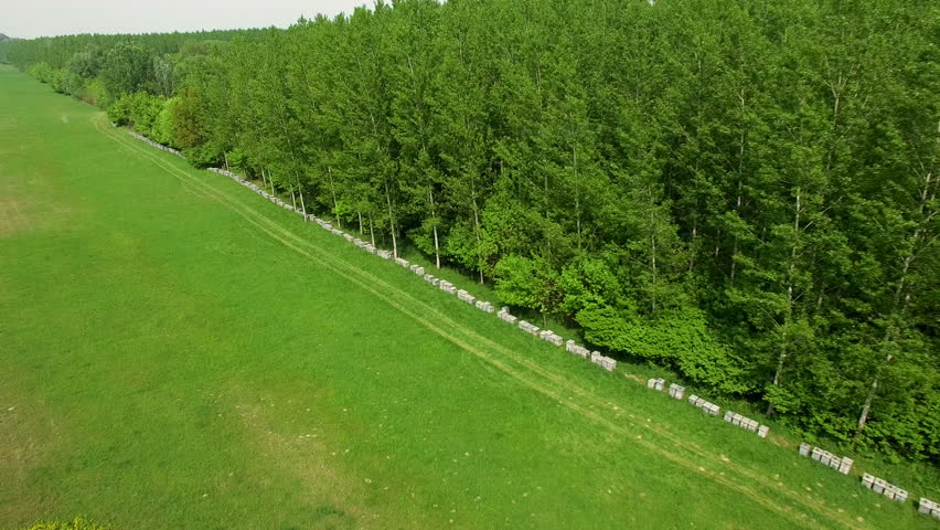 Aerial: aerial view of beehives lined up next to forest entrance.