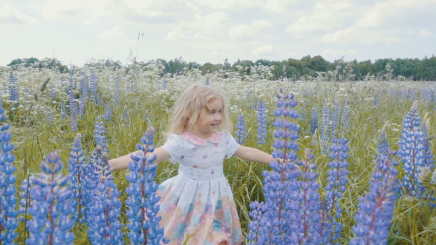 Cute Little Girl Having Fun and Spinning In the field among the flowers of lupine . Freedom concept. Sunset.  Slow Motion.