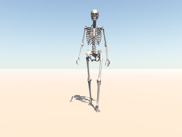 A walking skeleton. | Shutterstock HD Video #2853