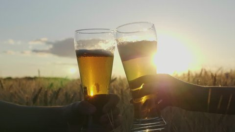 Clink glasses of cold beer at sunset, against the background of a field of barley or wheat. Close-up, the frame shows only hands