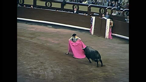 Madrid, Spain - circa 1978: picador and matador fighting wounded bull struggling for life jabbed with a lance by the picador spearman horseman in traditional dress. Restored 70s archival footage.