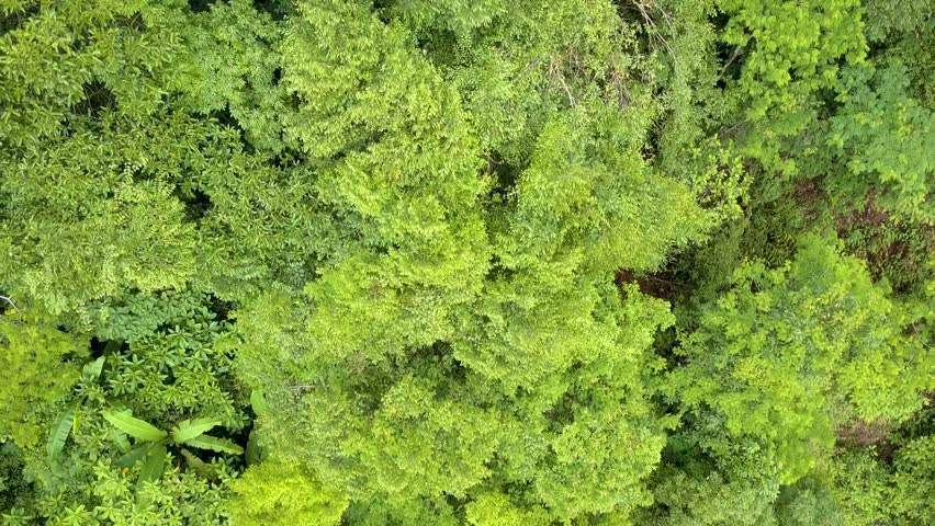 Aerial view from a drone of Siribhumi Waterfall, Chiang Mai, Thailand  | Shutterstock HD Video #28586563