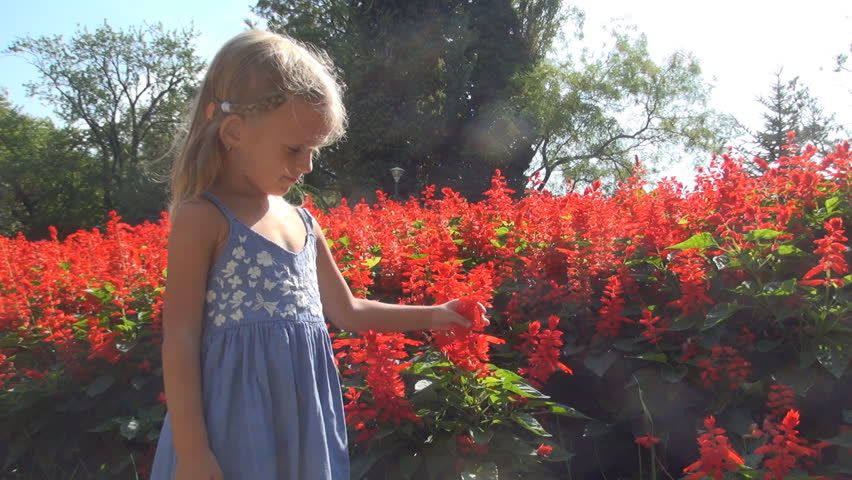 Child Smelling and Playing with Flowers, Little Girl Touching the Flowers