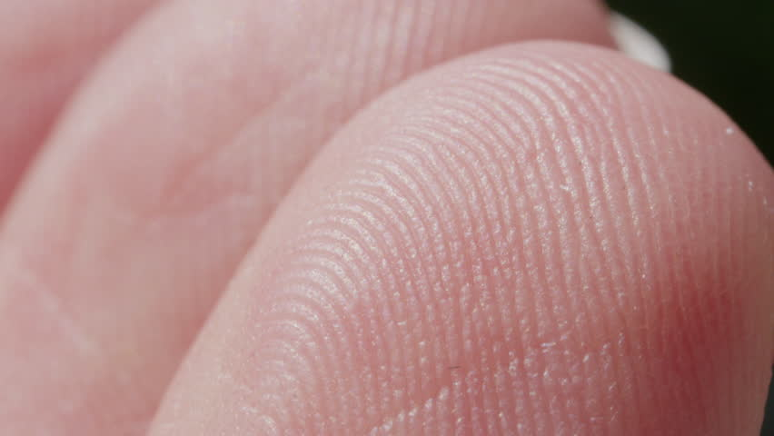 EXTREME CLOSE UP MACRO: Detail of fingerprint on Caucasian index finger. White person's skin pattern and texture on fingertips. White man's finger prints | Shutterstock HD Video #28656043