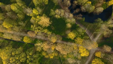 Aerial View Spring aerial survey drone big city park rustle of leaves deciduous forest approach autumn gold tree gold autumn last leaves indian summer approach last snow smell autumn early autumn