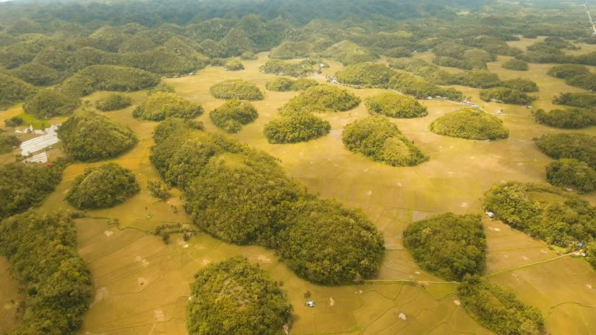 Amazingly shaped Chocolate hills on sunny day on Bohol island, Philippines. Aerial view Chocolate Hills in Bohol, Philippines are earth mounds scattered all over the town of Carmen. 4K video. Travel