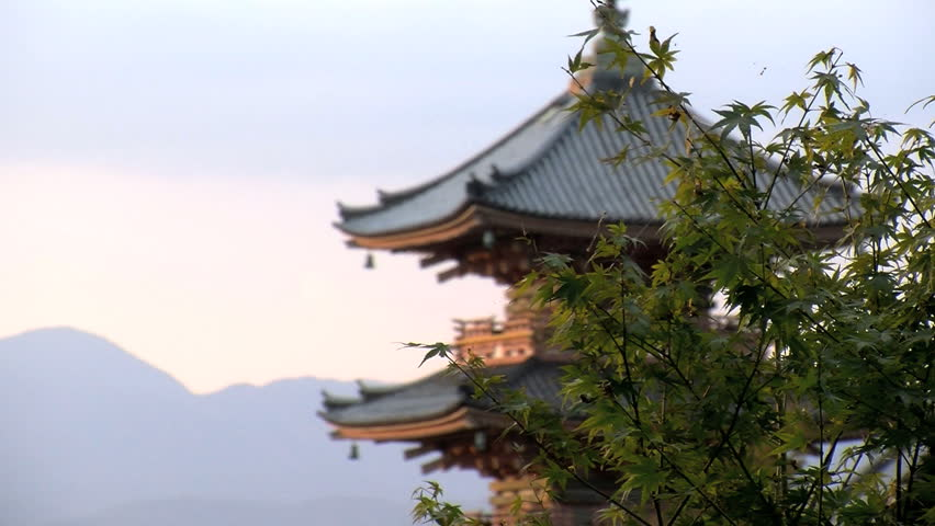 KYOTO, JAPAN - CIRCA 2012: Slide from the tree with focus at the pagoda of the Kiyomizu temple | Shutterstock HD Video #2892487