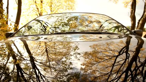Pov on-board-camera on a hood of a car driving through a forest.