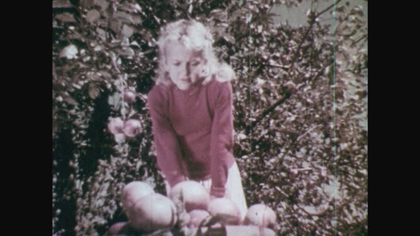 1950s: Apples in basket, grasshopper on the edge. Girl bends down to look. Girl reaches toward basket. | Shutterstock HD Video #28988227