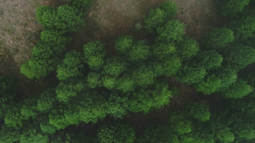 Aerial view of mountains and nature  | Shutterstock HD Video #29283343