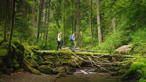 A couple of tourists cross the mountain river along a fallen tree. Adventures and extreme tourism, overcoming obstacles