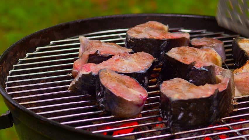Grilled Fish Steak On The Grill Pan | Shutterstock HD Video #29503993