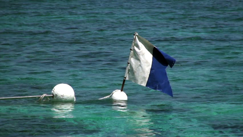 A blue and white nautical 'alpha' flag flies on the great barrier reef to signal divers below. #2959933
