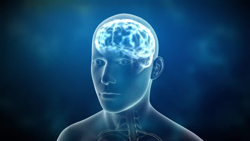 Neuronal Activity Male Blue