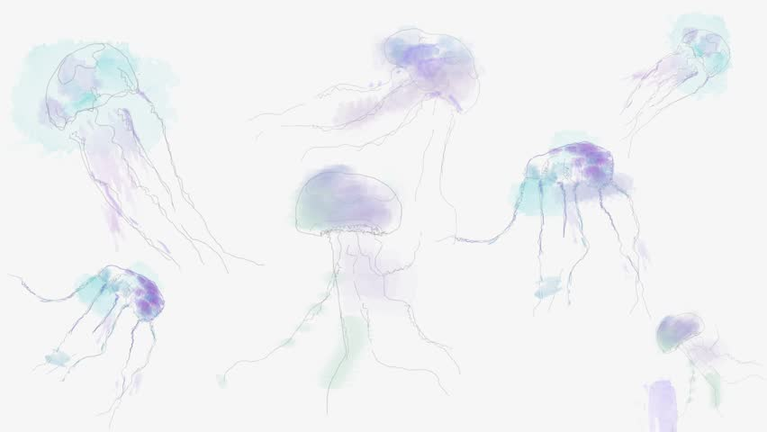 Jellyfish watercolor cartoon animation. sea world concept footage. Colored watercolor Jellyfish footage. -stock footage | Shutterstock HD Video #29671558