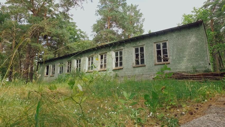 Forsaken Old Brick Building In Forest Camera Moves Forward Huge Pines Are Standing