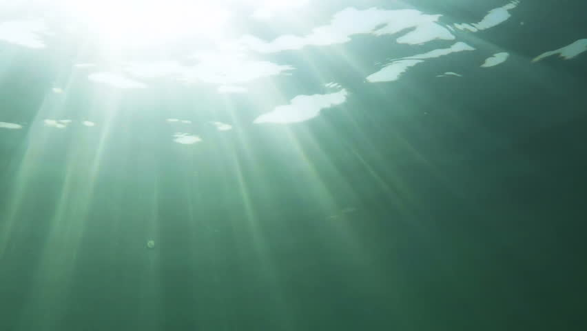 sunlight rays in water. sunlight in the water column hd stock footage clip rays e