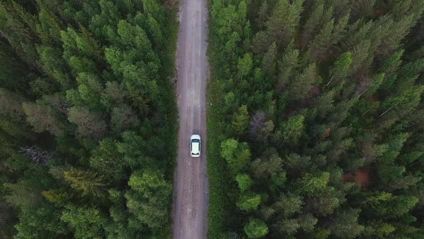 Aerial view of white car driving on country road in forest. Cinematic drone shot flying over gravel road in pine tree forest #30202843