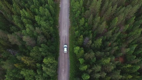 Aerial view of white car driving on country road in forest. Cinematic drone shot flying over gravel road in pine tree forest