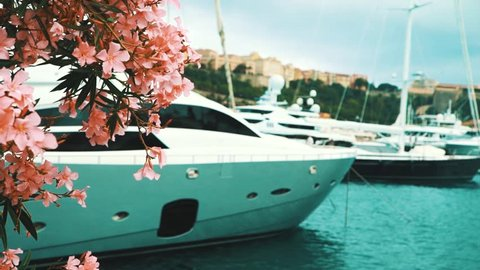 Beautiful flowers and big yatch in Monaco
