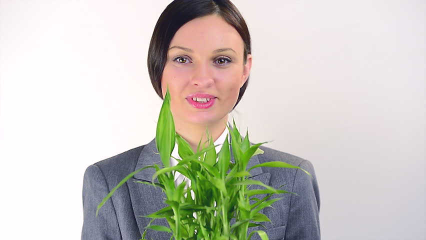 Business Woman Taking Care of Stock Footage Video (100% Royalty-free)  3053233 | Shutterstock
