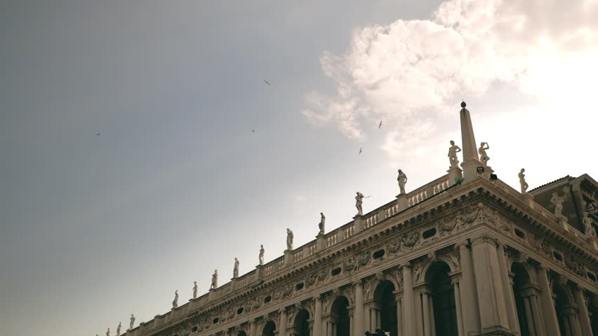 Slow motion flying birds at Saint Mark's Square. Venice, Italy.   Shutterstock HD Video #30539833