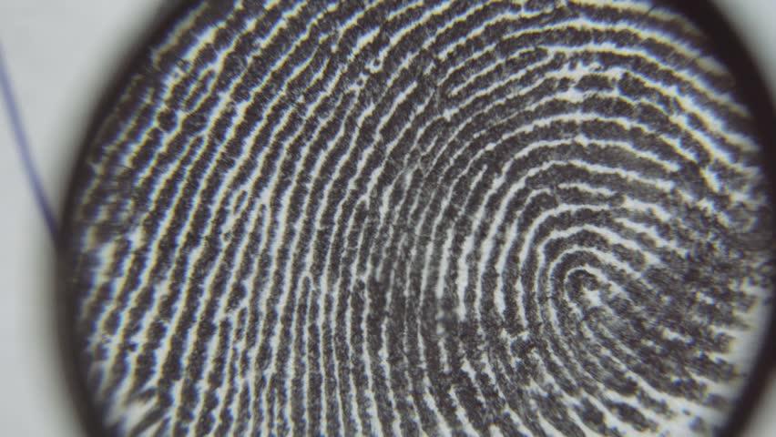 Dactyloscopic Investigate Fingerprints  Macro Shot  Stock Footage Video  (100% Royalty-free) 30662563 | Shutterstock