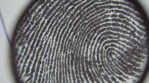 Dactyloscopic investigate fingerprints. Macro shot.