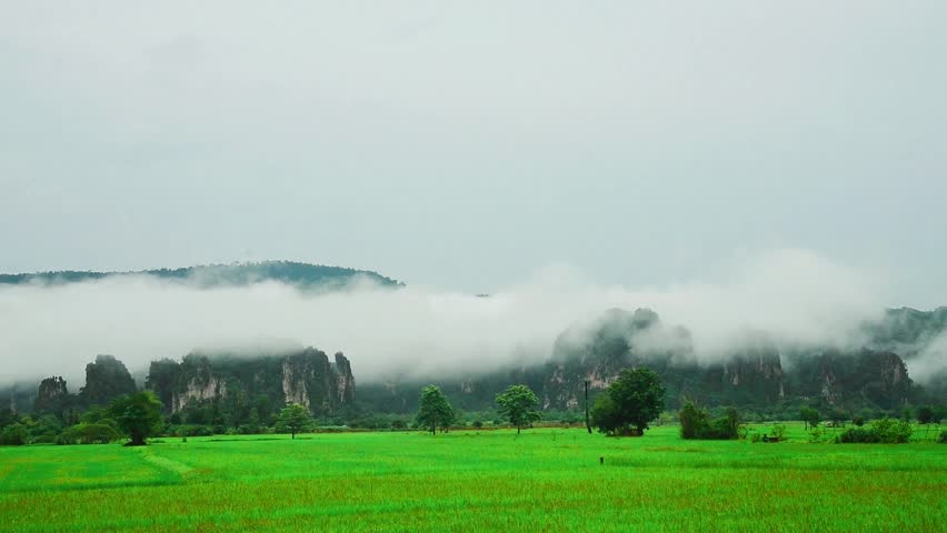 clouds mass rolling over mountains and foreground with  rice field.