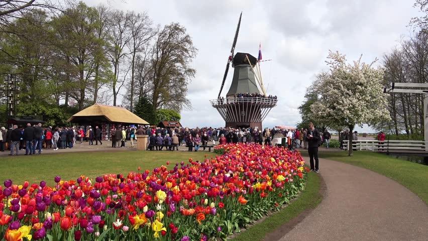 первую нидерланды апрель фото является для всех