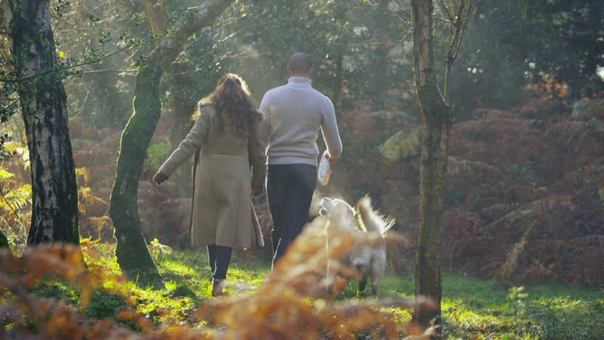 An attractive couple are walking through the forest in the early morning light and exercising their dog. In slow motion | Shutterstock HD Video #3105163