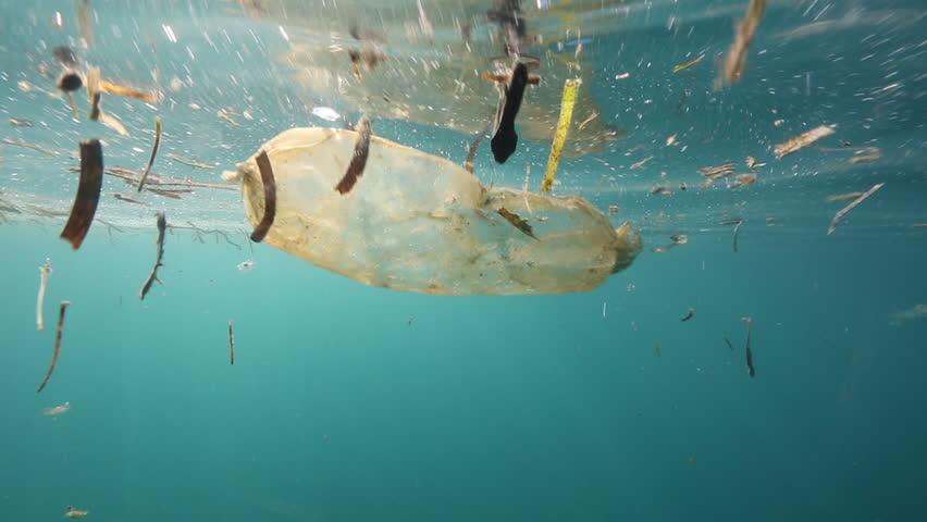 Plastic bag floating underwater at Bunaken Island, Indonesia | Shutterstock HD Video #31132363