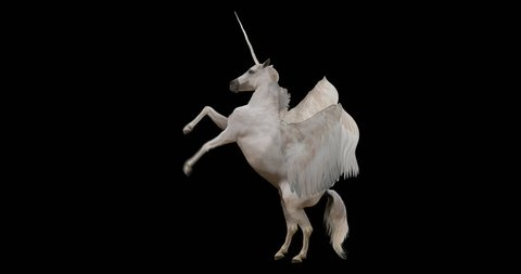 Pegasus and winged Unicorn rearing on a transparent background. Isolated and cyclic animation. Alpha channel.